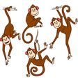 set monkeys in different poses vector image vector image
