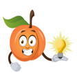 apricot with lighting bulb on white background vector image vector image