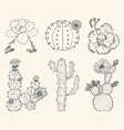 home cactus plants and flowers set of cozy cute vector image vector image
