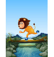 lion skating in nature vector image vector image