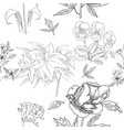 seamless pattern with flowers sketches vector image