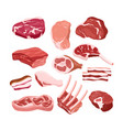set fresh tasty meat icons vector image