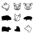 Set of Pork labels Pig silhouettes and heads vector image