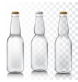 Set realistic glass bottles vector image