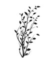 silhouette tree branch bush isolated vector image vector image