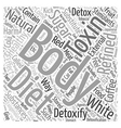 body detox diet natural Word Cloud Concept vector image vector image