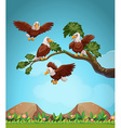 Eagles flying over the field vector image vector image