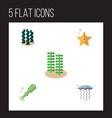 flat icon marine set of sea star seaweed medusa vector image vector image