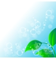 Green leaves ecology on lighting blue background vector image