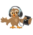 Owl with headphones listening to music vector image