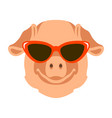 pig in glasses face flat vector image vector image