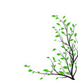silhouette tree branch with a lot green leaves vector image vector image