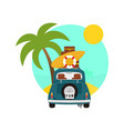summer tropic traveling activity scenery design vector image