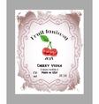 Vintage fruit alcohol labels vector image