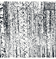 Birch forest texture vector image vector image