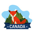canadian fox scene icon vector image vector image