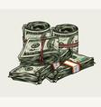money pile colorful vintage concept vector image