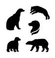 Polar bear silhouettes vector image vector image