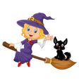 Witch riding broom with cat vector image vector image