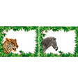 zebra and leopard on nature frame vector image vector image
