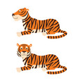 adult big red tiger lies on ground wildlife and vector image vector image