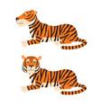 adult big red tiger lies on ground wildlife vector image
