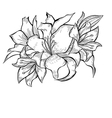 Black and white of Lily flowers vector image