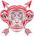 chimpanzee head in pop art style vector image vector image