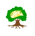 eco logo tree with sun inside vector image vector image