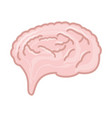 isolated pink brain vector image vector image