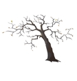 Lonely dead tree with sparse leaves vector image