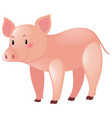 pink pig on white background vector image vector image