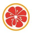 Red grapefruit stylish icon Juicy fruit logo vector image vector image