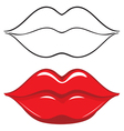 Sexy red female lips vector image vector image