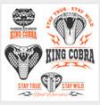 biker patches king cobra - set vector image vector image