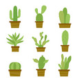 cactus icon flat design plants pot cartoon vector image vector image