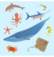 Cute ocean animals simple creatures Octopus vector image vector image