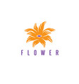 design template abstract tropical flower vector image