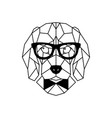 dog beagle in glasses geometric style vector image