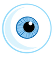 Eye Ball vector image vector image