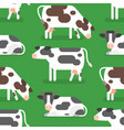 flat style seamless pattern with cow vector image vector image