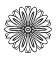 herb bio flower icon simple style vector image