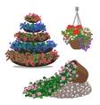 Set of floral arrangememt vector image vector image