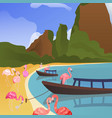 tropical flamingo background summer time banner vector image vector image