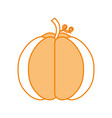 autumn seasonal pupmkin harvest nature vector image