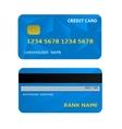 Bank Card vector image vector image