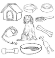 collection of dog supplies vector image