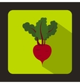 Fresh beetroot with leaves icon flat style vector image vector image