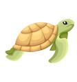 happy cute turtle walking with smile cartoon vector image vector image