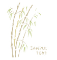 bamboo watercolor style vector image